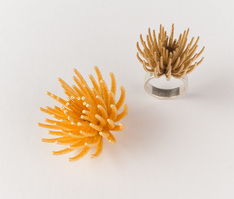 Louise Rutherford, Rockpool, 3D printed jewellery, Gilberd Marriott Gallery, Wellington new Zealand