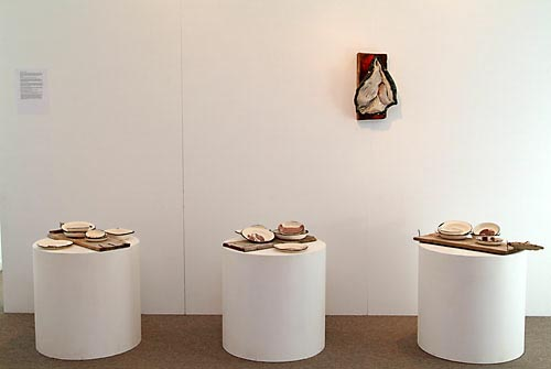 Phillipa Durkin ceramic artwork, Installation photo, Gilberd Marriott Gallery 2009